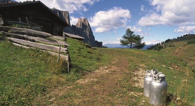 Alpe di Siusi in the summer